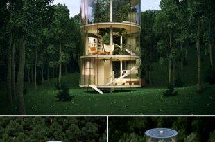Quá lạ với căn nhà hình trụ bằng kính trong suốt giữa rừng rậm - Hình ảnh 01