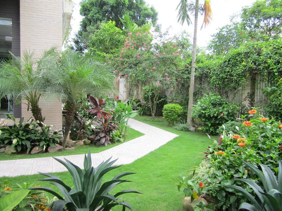 Lối đi vào cổng - Mẫu biệt thự nhà vườn